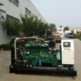 100KW生物质气发电机组