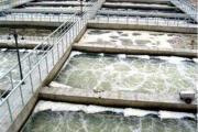 化工行业废水处理 化工厂污水工程改造