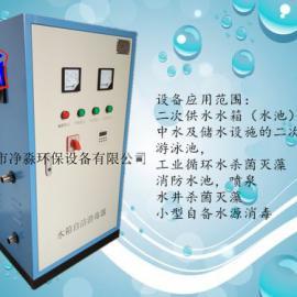工业循环水杀菌灭藻消防水池用臭氧消毒机臭氧发生器