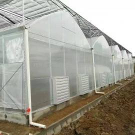 塑料薄膜温室大棚的结构特点