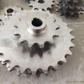 10A 16A不锈钢传动链轮