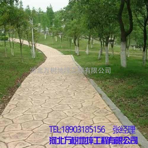 水泥路面压花性能好易施工-河北万树