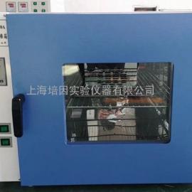热风循环卧式干燥箱DGG-9140A