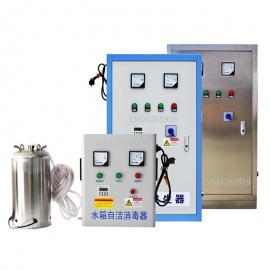 山东水箱自洁消毒器山东臭氧消毒器山东微水箱电解厂家
