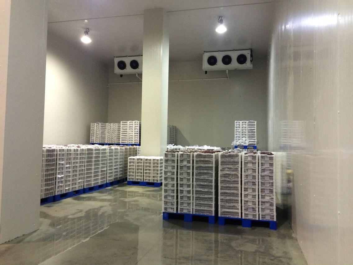 江油冻库设计,江油保鲜库安装,江油果蔬冷藏库安装