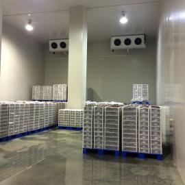 西安冷库设备安装,西安冷库造价,西安小型冷库安装