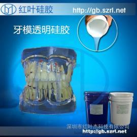 蓝白色牙模液体硅胶