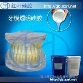 牙科科教模型模具硅胶