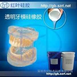 科教牙模硅胶