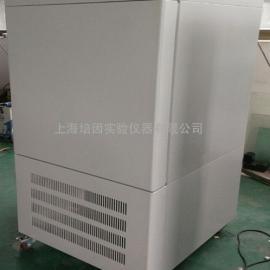 低温生化培养箱零下20/40度细胞培养箱 SHP-80DA