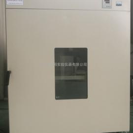大容积食品热风循环烘干箱DHG-91000A