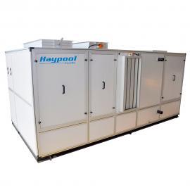 高级会所泳池专用帝普HAYPOOL三集一体热泵|泳池除湿解决方案