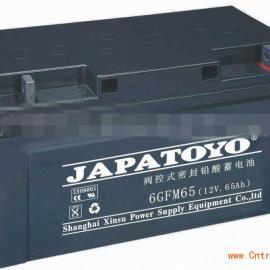 东洋蓄电池 6GFM65 广东东洋 报价咨询