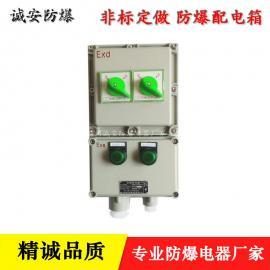 电机控制防爆配电箱 厂家生产
