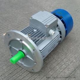 紫光BMA8024制动刹车电机_上海梁瑾机电设备有限公司