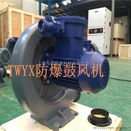 FX-3中压透浦式防爆鼓风机