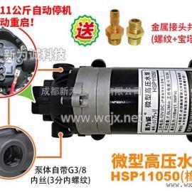 HSP11050小型高压水泵