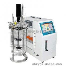 实验型玻璃发酵罐