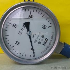 布莱迪Y100不锈钢径向压力表/耐震抗震表真空负压表