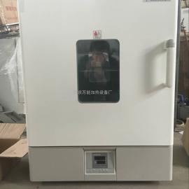 电热恒温鼓风干燥箱万 能加热