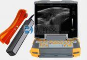 进口活体背膘仪,美国进口活体背膘眼肌面积检测仪