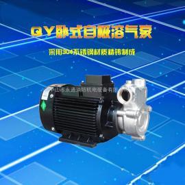 25QY-2SS耐腐蚀自吸溶气泵