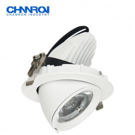 长隆商业照明定制LED象鼻射灯 原装飞利浦驱动COB芯片 品质保障