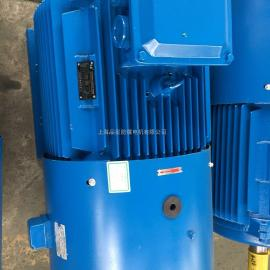 YPT-225M-4-45KW 变频调速普通电机