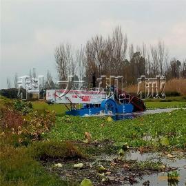 昆明水葫芦清洁保护环境,净化水质水草清洁清漂船