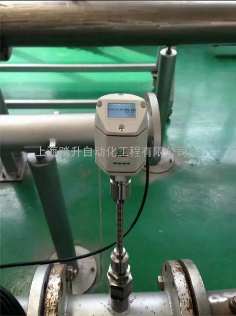 S400 CS希尔思热式气体质量流量计