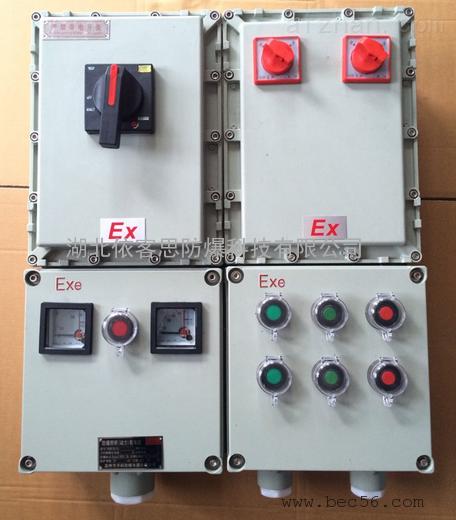 山东BXX-2/100/380V防爆动力检修箱-2回路防爆箱的价格