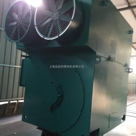 YPTKK-710-8-2000KW-10KV 变频调速带空空冷却器高压电动机