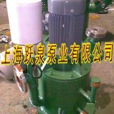 工业废水提升泵 无密封自控自吸泵