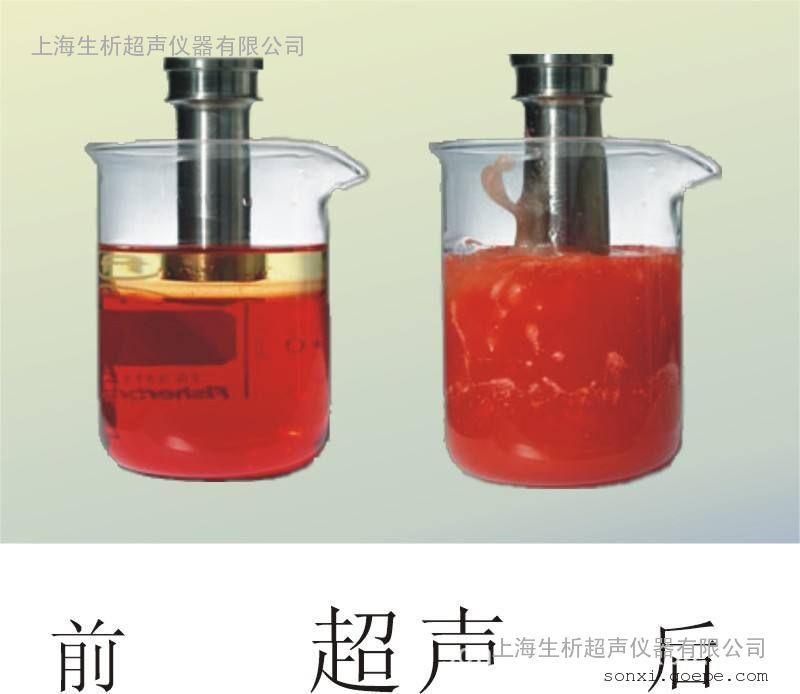 FS-1200N超声波处理器,液晶屏,处理量2000ml,可定制