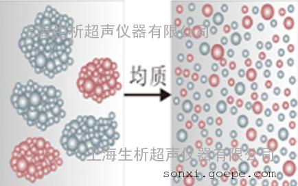 超声波细胞破碎仪厂家直销,处理量3000ml,可定制,价格商谈