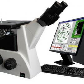 上海厂家MX-3000金相显微镜