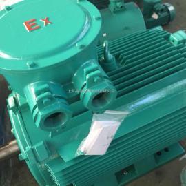 YBBP-315 隔爆型变频调速电机
