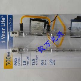 美国GE照明Q300T3/4CL双端卤钨灯Q300T3/HD/SCD2