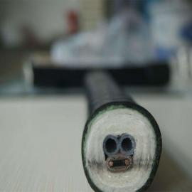 CEMS烟气取样分析伴热管