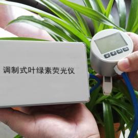 叶绿素荧光仪SYS-YL2