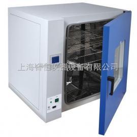 实验室干燥箱,工业烤箱DHG-9145A