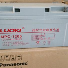 LUOKI蓄电池型号尺寸规格
