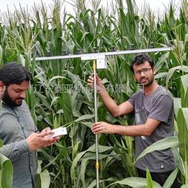 植物冠层立体分布测量系统SYS-GG16