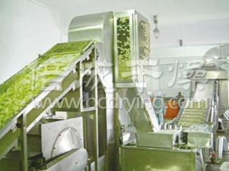 DWC系列鲜竹笋网带式烘干机