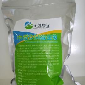 工业有机废水处理工程水质提标专用菌种