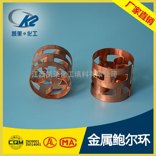 304材质金属鲍尔环 碳钢鲍尔环 不锈钢鲍尔环填料