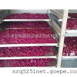 山东专业制造茶叶草药玫瑰花带式烘干机