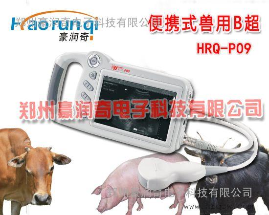 奶牛专用B超,奶牛用B超测孕仪HRQ-P09价格