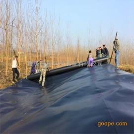 山东黄岛 黑膜沼气池施工 企业施工单位 盖泻湖沼气建设单位
