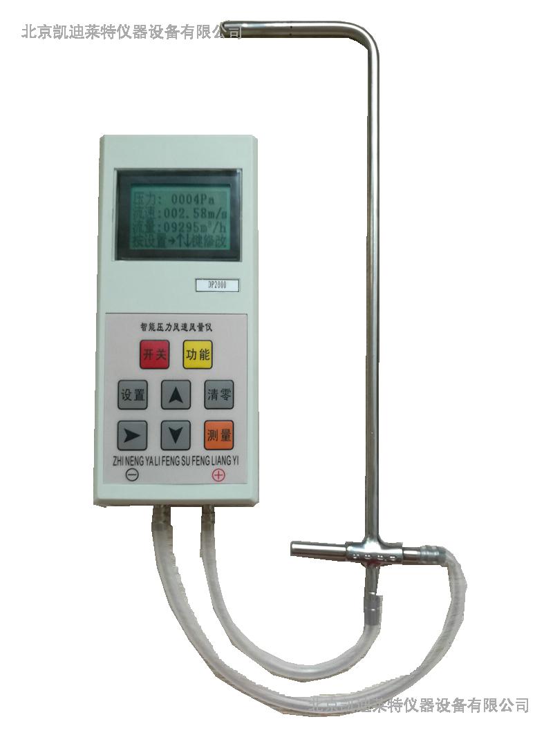 气体流量计DP1000-1F型